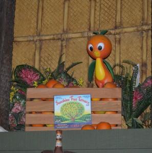 Orange Bird2