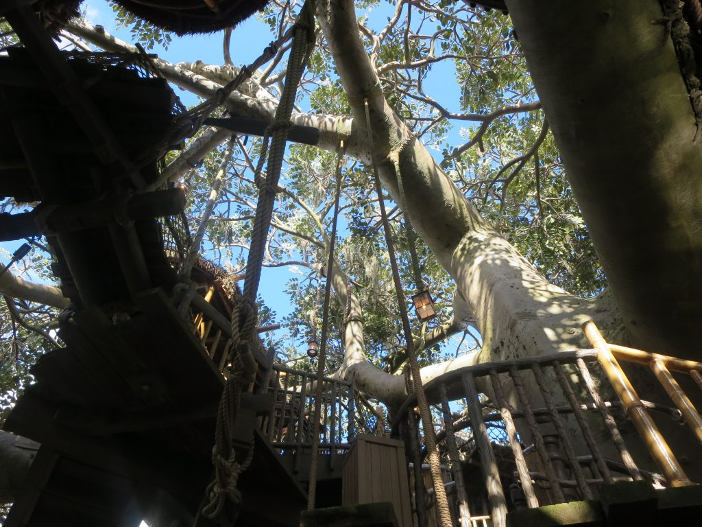 Treehouse up