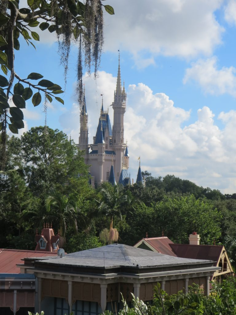 A zoomed-in photo of Cinderella Castle from the Swiss Family Treehouse.